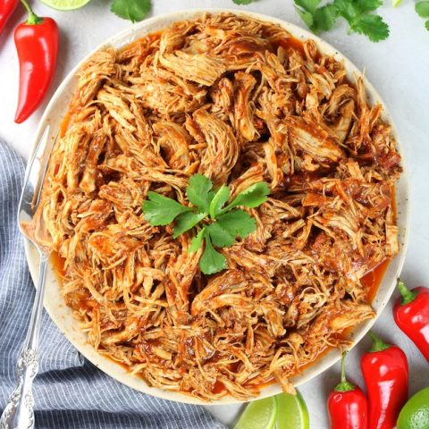 Plate of shredded mexican chicken
